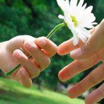 Настроение дня — доброта