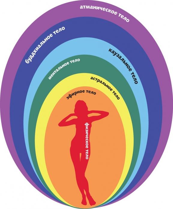 9 защитных систем нашего организма.