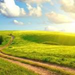 Сказка «Путешествие за счастьем»