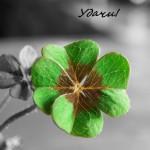 7 правил привлечения удачи