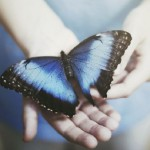 Притча «Всё в твоих руках»