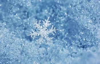 Настроение дня - снежинки